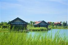 北海园博园湿地游赏工程.jpg