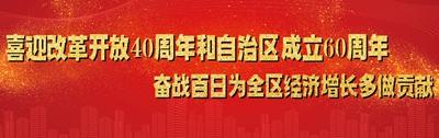 喜迎改革开放40周年和自治区成立60周年      奋战百日为全区稳增长多做贡献